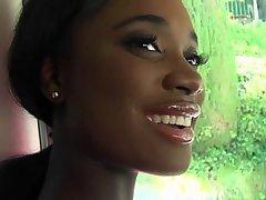 Amatér, Krása, Negři, Studentů