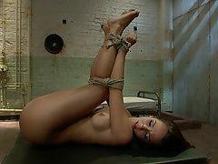 Anal seks, BDSM, Esmerler, Fetiş