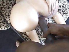 Big Boobs, Big Butts, Brunette, Interracial