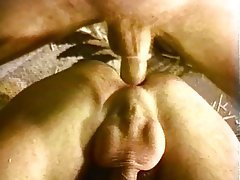 Anal, Bisexual, Hairy, Facial