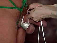 BDSM, Groupe de trois, Brunettes, Femme dominatrice